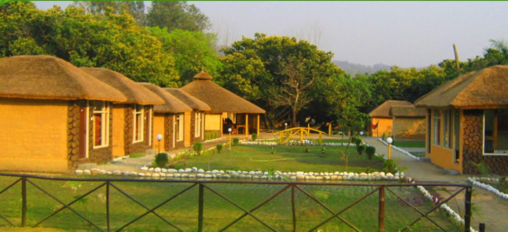 dhikala forest lodge archives india hotels travel blog. Black Bedroom Furniture Sets. Home Design Ideas