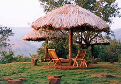 Wildernest Goa