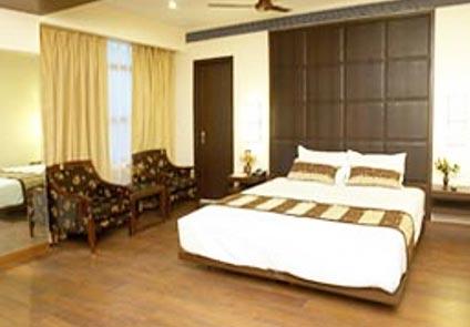 Hotel Metro Heights Delhi