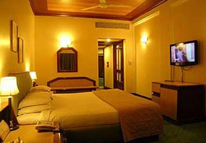 Hotel Piccadily Raipur