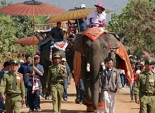 2007 Elephant Festival in India