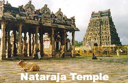 Five important nataraja shrines of tamil