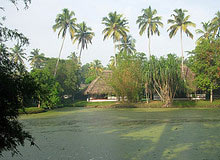 Kerala with Exotic Goa tour